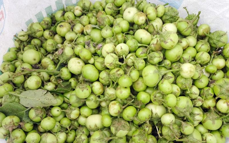 Món súp giàu dinh đưỡng